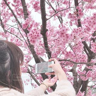 森の中、selfie を取る女性の写真・画像素材[1877975]