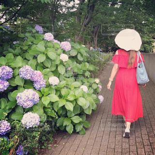 庭に立っている人の写真・画像素材[2280639]