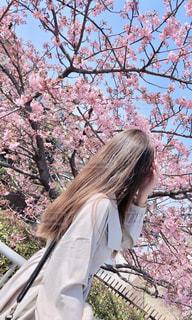 木の隣に立っている女性の写真・画像素材[2978152]