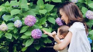花を持つ小さな女の子の写真・画像素材[3289080]