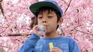 帽子をかぶった小さな男の子の写真・画像素材[4203804]
