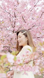 木の前に立っている女性の写真・画像素材[4231599]