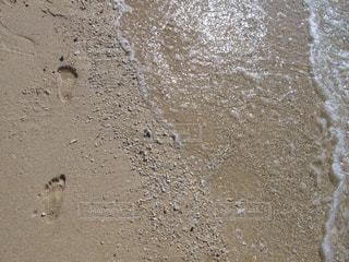 海の写真・画像素材[364574]