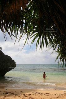 海の写真・画像素材[364575]
