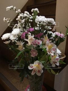 花の写真・画像素材[364505]