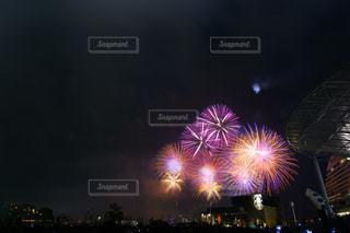 夜空の花火の写真・画像素材[755101]