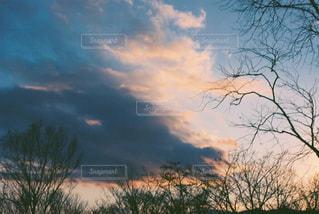 空の写真・画像素材[386727]