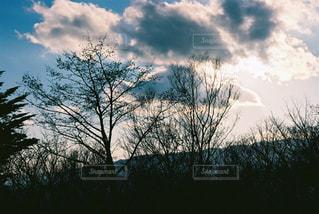 空の写真・画像素材[386729]