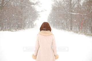 雪の中のポートレートの写真・画像素材[366186]