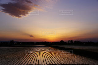 風景 - No.366194