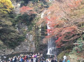 秋の写真・画像素材[365855]