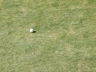 ボールの写真・画像素材[372452]