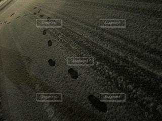 雪に残る足跡の写真・画像素材[1777347]
