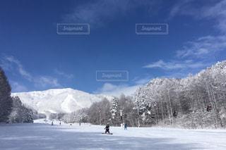No.374034 雪