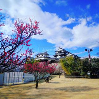 No.367903 風景