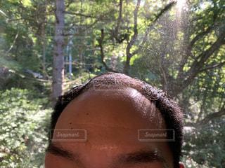 森の隣に立っている男の写真・画像素材[2423131]