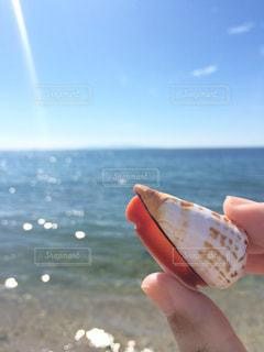 海の写真・画像素材[511635]
