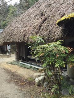 藁葺き屋根、忍者村、日本、昔、設計、素敵、丈夫 - No.387099