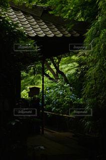 鎌倉 - No.369313