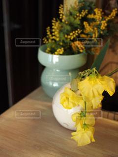 花の写真・画像素材[374952]