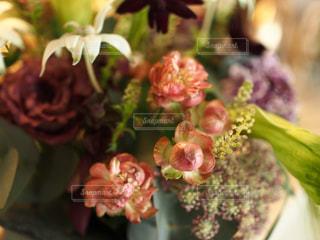花の写真・画像素材[401244]