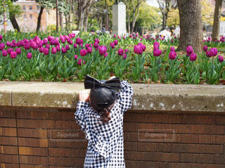 花の写真・画像素材[418218]