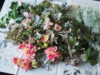 お花の写真・画像素材[561296]