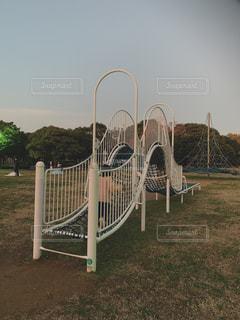 夕方の公園の写真・画像素材[2774848]