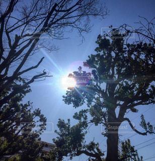 空の写真・画像素材[370288]