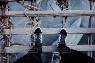 橋の上の写真・画像素材[1019638]