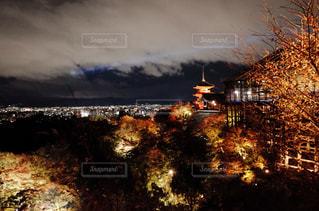 京都の紅葉の写真・画像素材[1019648]