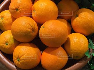 オレンジの写真・画像素材[376915]