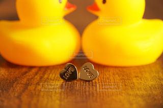 見つめ合うアヒルの人形とハートの写真・画像素材[1145190]