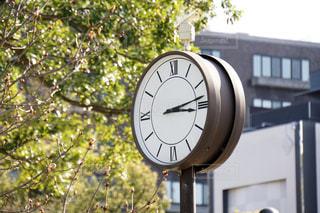 公園の時計の写真・画像素材[1226997]