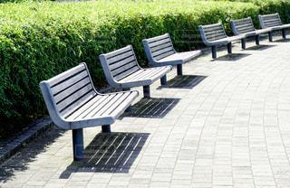 公園のベンチの写真・画像素材[1240828]