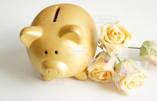 ブタの貯金箱と白い薔薇の写真・画像素材[1482505]