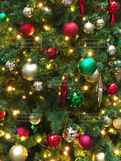 クリスマスツリー イルミネーションの写真・画像素材[1649659]