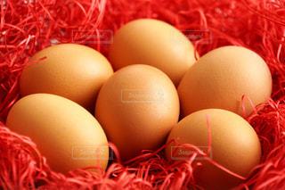 赤いペーパークッションの中の赤卵の写真・画像素材[1770791]