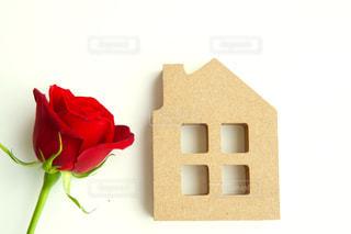 家と薔薇の写真・画像素材[3168604]