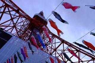 東京タワーの写真・画像素材[454728]