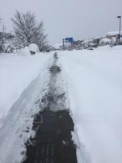 冬 - No.371201