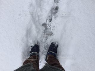 雪 - No.371710