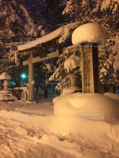 雪 - No.371713