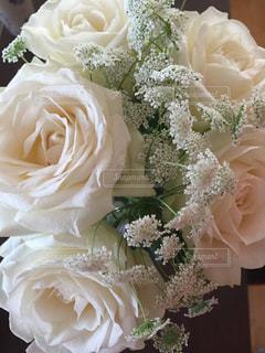 花の写真・画像素材[371664]