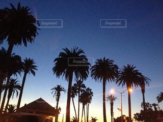 空の写真・画像素材[371686]