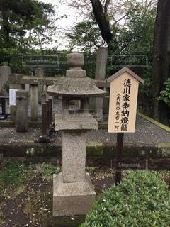 No.385166 桜