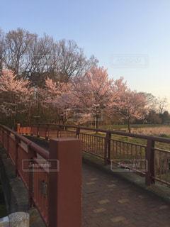 公園 - No.417118