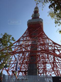 東京タワー - No.431066