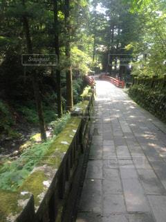 風景 - No.372406