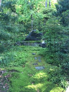 風景 - No.372407
